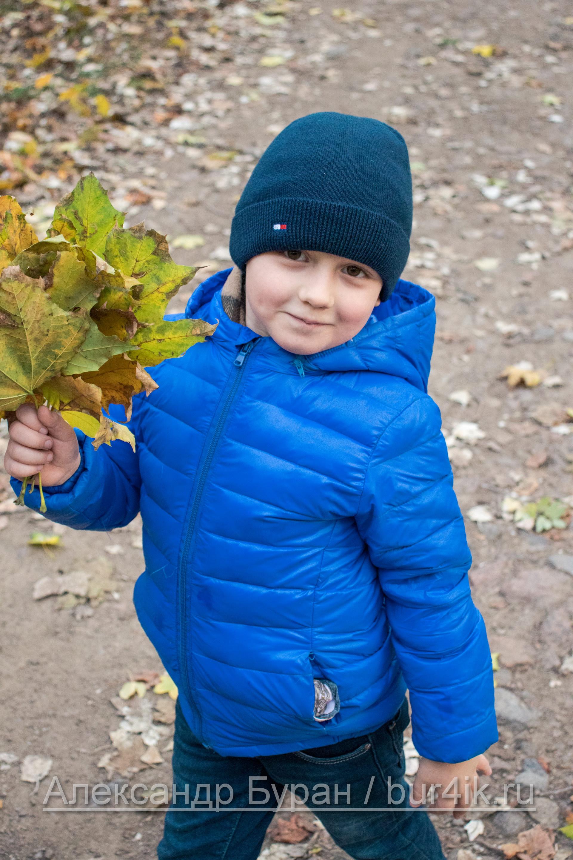 Мальчик позирует в парке с осенними листьями