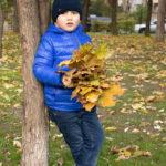 Мальчик в синей куртке с букетом желтых листьев стоит под деревом осенью в парке