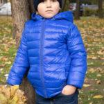 Мальчик в синем поле стоит возле дерева в осеннем парке