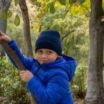Мальчик пытается подняться на молодое дерево в осеннем парке