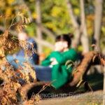 Осенью растение и человек топает Шпрее в фоновом режиме