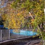 Путь вокруг пруда в осеннем парке