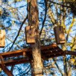 Детский аттракцион для альпинистских веревок и деревьев