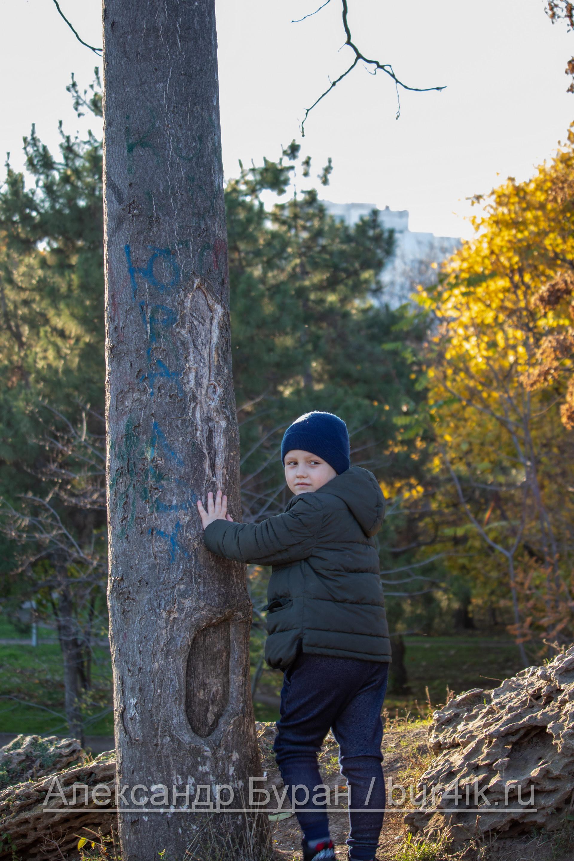 Мальчик спиной к фотографу, положив руки на дерево в парке