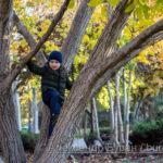 Мальчик лезет дерева в осеннем парке