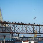 Нефтяной танкер делает морские испытания перед отправкой на рейс для грузов